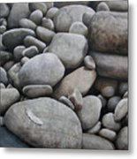 Riverbank Of Napo Metal Print