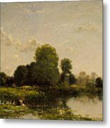 Riverbank With Fowl Metal Print
