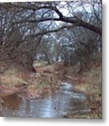 Rivers Bend Metal Print