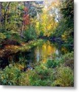 Riverscape In Autumn Metal Print