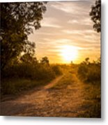 Road In Botswana Metal Print