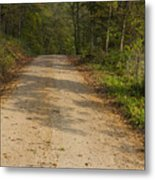 Road In Woods Autumn 2 A Metal Print