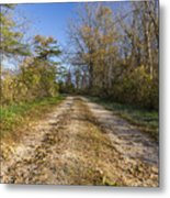 Road In Woods Autumn 4 A Metal Print