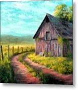 Road On The Farm Haroldsville L B Metal Print