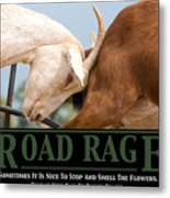 Road Rage Metal Print