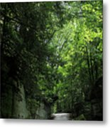 Road Through The Forest Gorge Metal Print