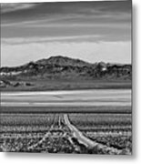 Road To ??? Metal Print