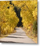 Road To Autumn Metal Print