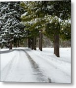 Road To Bishop's House Metal Print