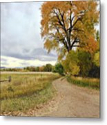 Road To Dads Place Metal Print by James Steele
