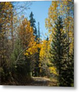 Road To Fall Colors Metal Print