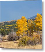 Road To Hart Prairie Metal Print
