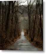 Road To Wildlife Metal Print