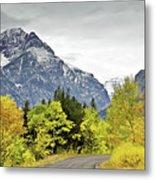 Road Too Autumn Metal Print