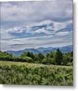 Roan Mountain 1 Metal Print