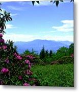 Roan Mountain Rhododendron Gardens Metal Print