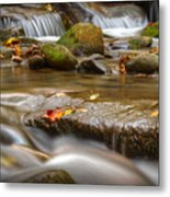 Roaring Fork Stream Great Smoky Mountains Metal Print