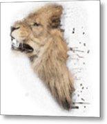Roaring Lion No 04 Metal Print