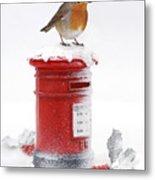 Robin And Postbox Metal Print