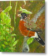 Robin In The Serviceberry Bush Metal Print