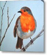 Robin In The Tree Metal Print
