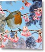 Robin On Winter Flowering Plum Metal Print