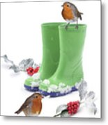 Robins And Green Wellies Metal Print