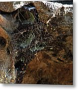 Rock Abstract With A Web Metal Print