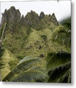 Rock Formations Seen Through Coconut Metal Print