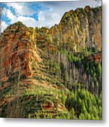Rocks And Pines Metal Print