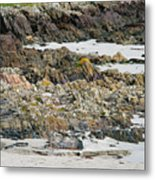 Rocky And Sandy Beach Metal Print