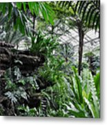 Rocky Fern Room Metal Print