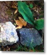 Rocky Ground Metal Print