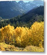 Rocky Mountain High Colorado - Landscape Photo Art Metal Print
