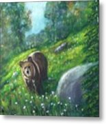 Rocky Mountain Spring Metal Print