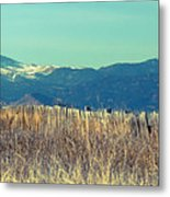 Rocky Mountain Twin Peaks Wood Fence View Metal Print