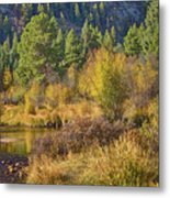 Rocky Mountains Autumn Metal Print