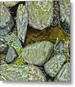 Rocky Nature Metal Print
