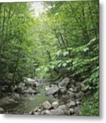 Rocky River In Green Metal Print