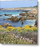 Rocky Surf With Wildflowers Metal Print