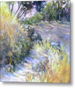 Rocky Trail Metal Print