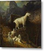 Rocky_mountain_goats Metal Print