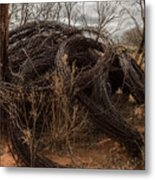 Rolls Of Barbed Wire Metal Print