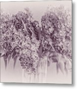 Romancing The Lilac Metal Print