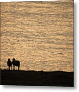 Romancing The Sheep Metal Print