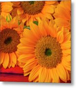 Romantic Sunflowers Metal Print