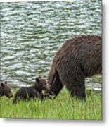Romping By The Lake With Mama Bear Metal Print
