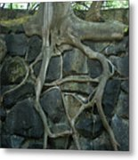 Roots And Rocks Metal Print