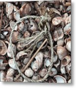 Rope In Shells Metal Print