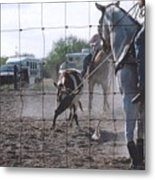 Roping Event 5 Metal Print